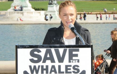 Hayden Panettiere Receives Award from Mayor, Saves Whales