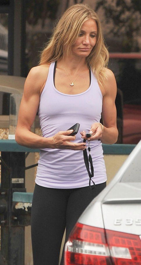 Cameron Diaz Is A Push Up Away From Looking Like Alex Rodriguez